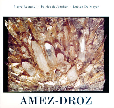 Raymonde AMEZ-DROZ catalogue cover 1996 - essay by Pierre Restany a.o.